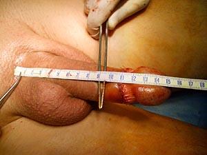 Порно измеряет член